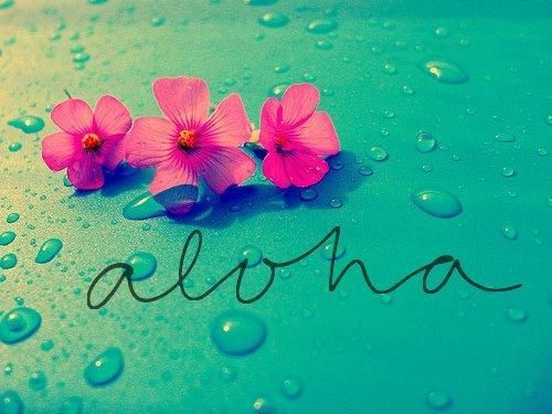 """ALOHA is a Hawaiian word meaning; """"Hello, Goodbye, Love, Compassion, Welcome and Good Wishes ..."""""""