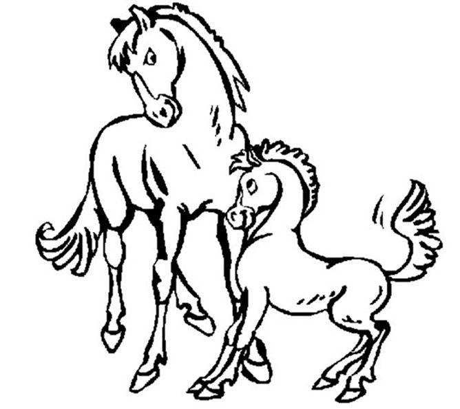 Ausmalbilder Pferde Mit Fohlen Ausmalbilder Pferde Malvorlage Einhorn Ausmalbilder