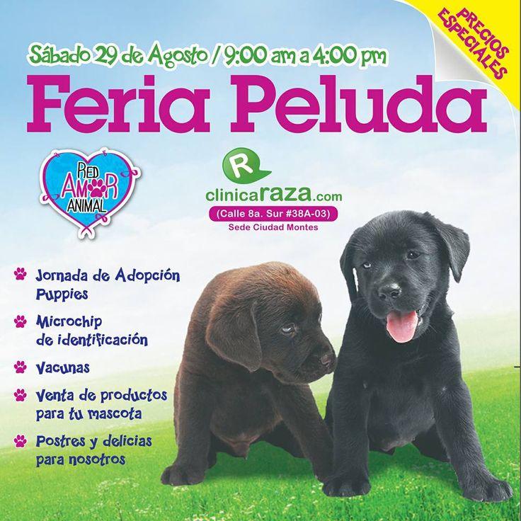 Feria Peluda. Sábado 2 de agosto #animal #Bogota