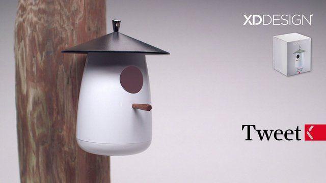 XD Design Tweet birdhouse