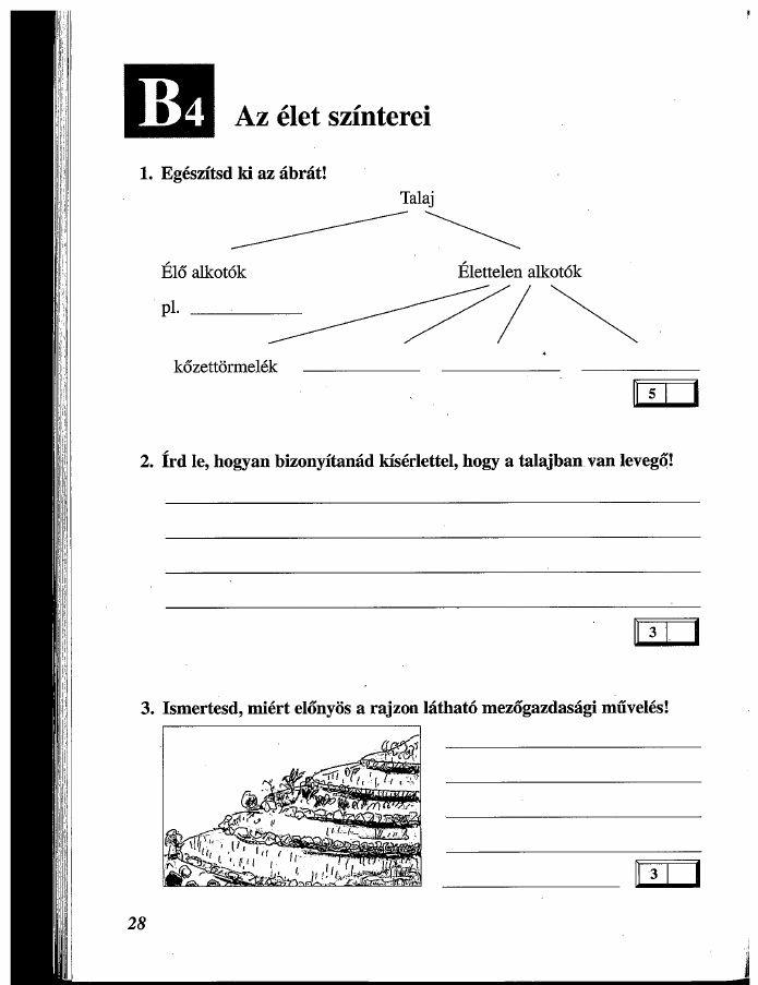 Mózaik Tudásszintmérő-környezetünk-titkai-4AB-1