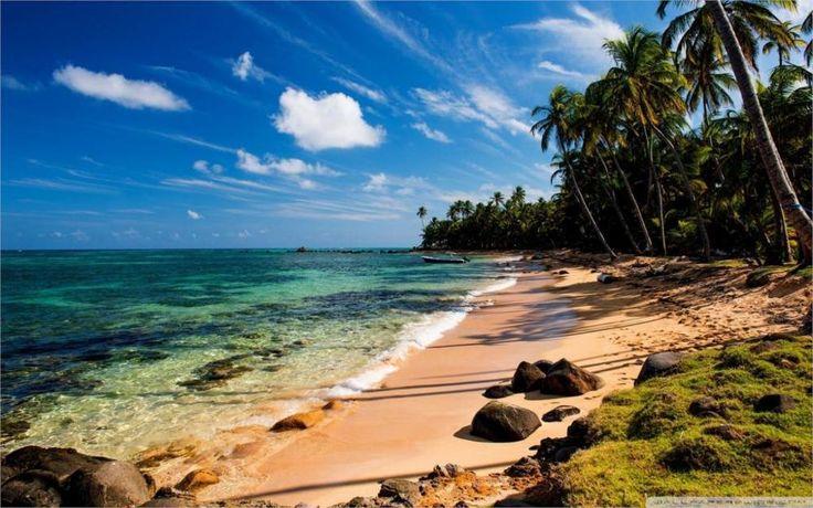 Природа Пейзаж тропический пляж с травой 4 Размеры Украшения Дома Холст Печати Плакатов