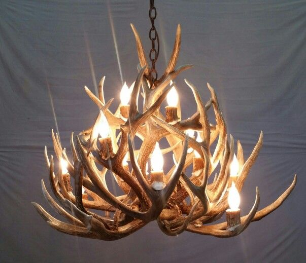 Antler Foyer Lighting : Best holiday window themes the clothes tree images