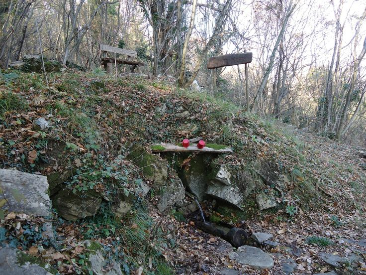Fonte Meria - Torreano (Ud) Fonte Meria is a fascinating stream located in the middle of the woods. It is a perfect destination for mountain bike lovers to reach through Monte Naos and Monte Forcis, enjoying the view of old woods of chestnut trees.