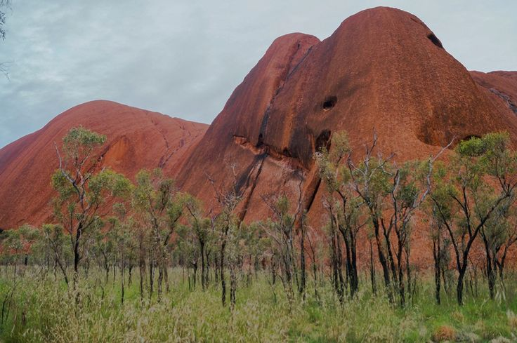 """My infamous """"star wars droid"""" rock face - part of Uluru"""