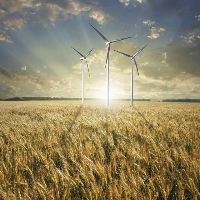 Nie chodzi o walkę z wiatrakami http://nowosci.com.pl/329373,Nie-chodzi-o-walke-z-wiatrakami.html