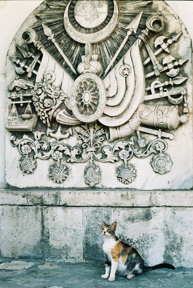 Arming of Padishah (Ottoman Sultan). Topkapi Palace, Istanbul, Turkey. (Kitty is belong to the republic) :)