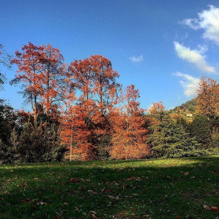 #villaserra #genova #genovamorethanthis #sky #wonderful #places #afternoon #afternoonlight
