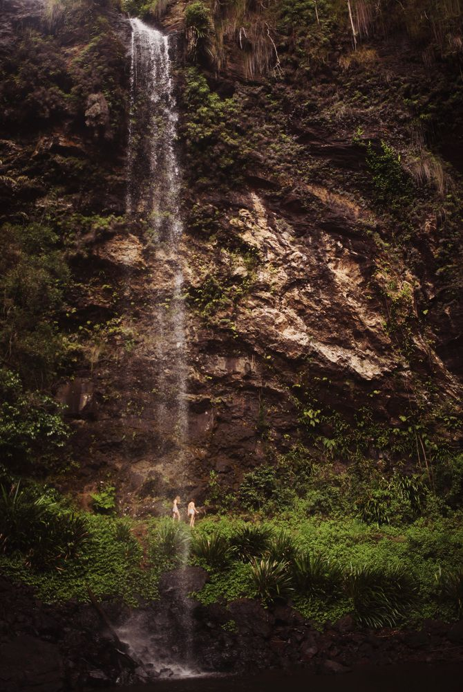 Springbrook National Park's towering and icy waterfall