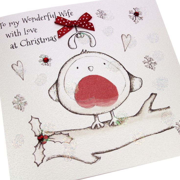 Handmade Christmas Card Luxury Embossed Glittered Polka Dot Bow Cute Robin - 'To my Wonderful Wife with Love at Christmas'