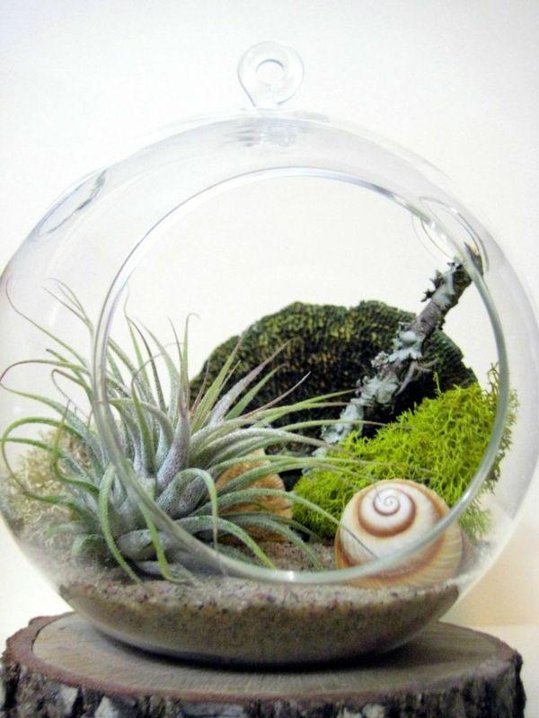 Moderne Vorhange Bringen Das Gewisse Etwas In Ihren Wohnraum Terrarium Planten Lucht Planten Kamerplanten