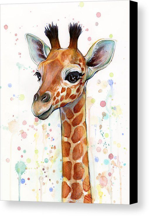 Baby Giraffe Watercolor  Canvas Print by Olga Shvartsur.  All canvas prints are professionally printed, assembled, and shipped within 3 - 4 business days and delivered ready-to-hang on your wall. Choose from multiple print sizes, border colors, and canvas materials.