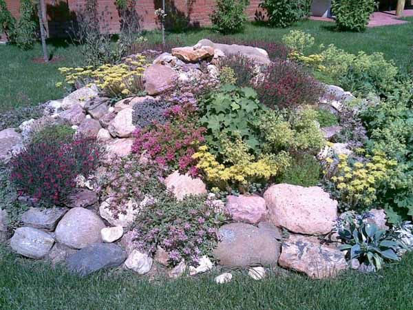 1000 ideas about rockery garden on pinterest rockery for Rock landscaping ideas