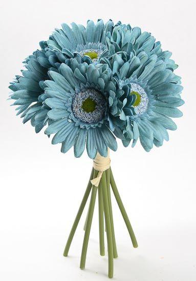 teal gerber daisy