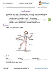 """Los huesos del cuerpo humano """"Segundo grado"""" 3°"""