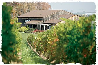 Thirty Bench Wine Makers, Beamsville