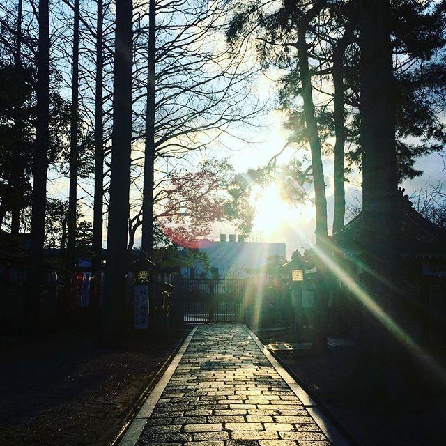 【hirameking】さんのInstagramをピンしています。 《阿倍野神社 鎮守の杜で迎える夜明け。凛とした空気の中で見るお日様はなんだか神々しいです。 #大阪 #阿倍野 #阿部野神社 #森 #境内 #朝 #日の出 #太陽#光 #japan #osaka #abeno #jinja #shrine #woods #morning #sun #sunrise #sunshine #sky #bluesky》
