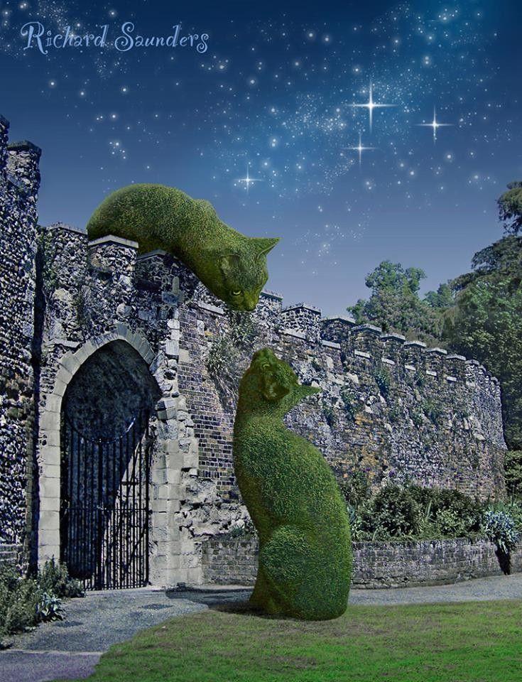 Картинки по запросу richard saunders cat trees