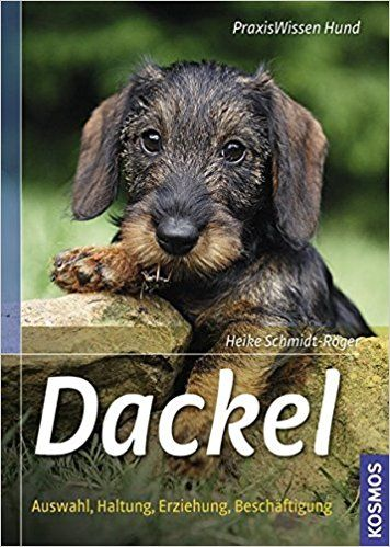 Dackel: Auswahl, Haltung, Erziehung, Beschäftigung Praxiswissen Hund: Amazon.de: Heike Schmidt-Röger: Bücher