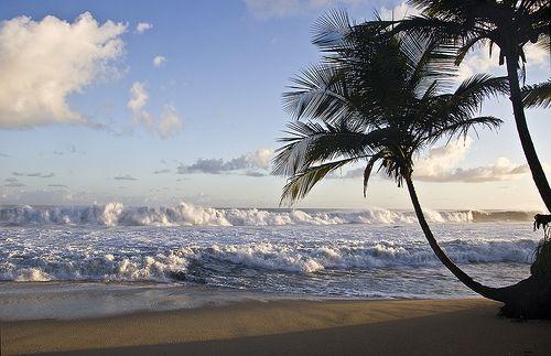 The Olokun – The Sea Goddess
