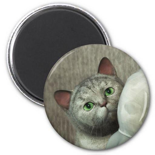 Gray Cat 1 Fridge Magnets