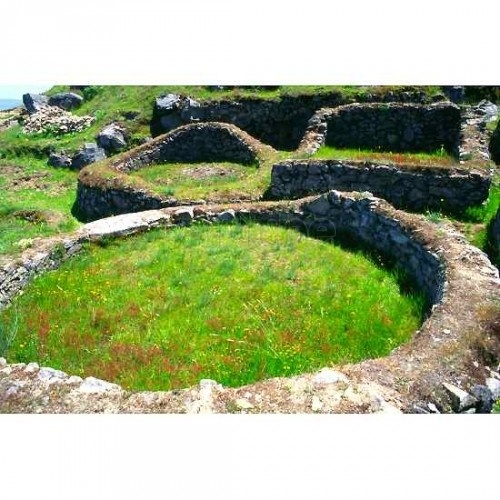Castromao (Celanova, Ourense). Celtic settlement. Fortified Enclosure own of the Iron Age (s. VI B.C. ), the historical stage known as military culture. The first news of the tank will have in 1875. In 1974 discovered the remains of a 'Tessera hospitalis or travellersâ', from the year 132 dc., which formed a pact between the inhabitants of Castromao and a high Roman military. Inhabited until the s.II dc. capital of the Celtic tribe of the Coelernios.