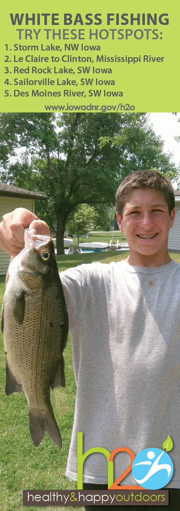 Try these great #Iowa hotspots for white bass #fishing!