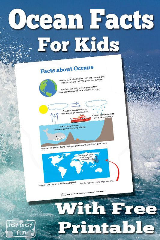 Ocean Facts for Kids With Free Printables