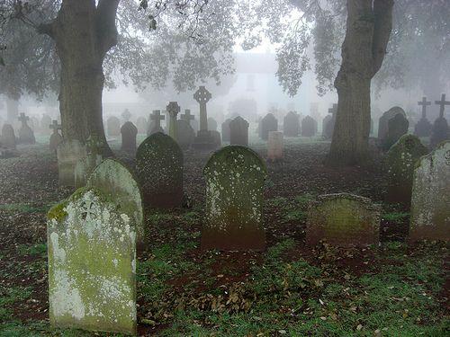 Misty Graveyard South Devon, Torquay, England 2012