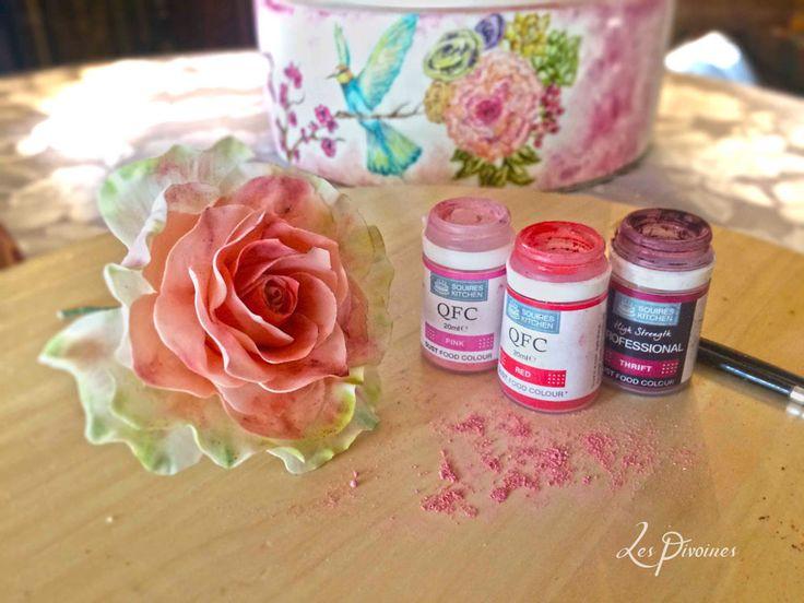 flori de zahar trandafiri