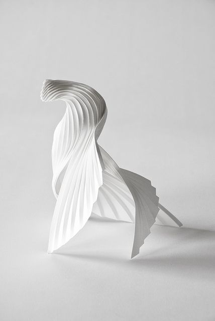 Richard Sweeney -  Sweeney focuses his sculpted paper forms on organic shapes. They don't necessarily have to be shells or leaves as this example shows it in fact has a shape of a bird which is a living creature.. Look at the details, things within animals like their skin texture or feathers, etc. It all contributes to creating a good design concept!