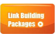MOS SEO Services has considerable experience in providing link building services for online businesses.