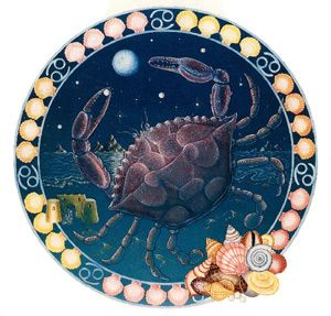lovely Luna and the Crab
