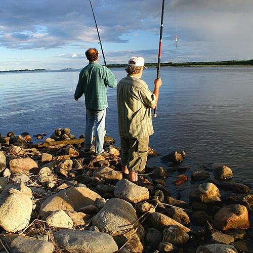 V Чемпионат мира по ловле хищной рыбы спиннингом с лодки http://news4men.ru/sport/novosti-obshhestvennoj-zhizni-v-chempionat-mira-po-lovle-xishhnoj-ryby-spinningom-s-lodki.html
