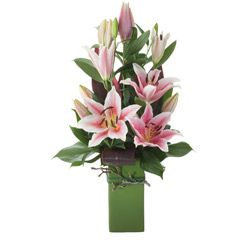 """Buy """"Lily Arrangement In Ceramic Container"""" for $115.60. A Modern Creation Of Oriental Lilies And Choice Greenery Arranged In A Ceramic Container.in Vibrant Colours, This Arrangement Is Suitable For Almost Any Occasion."""