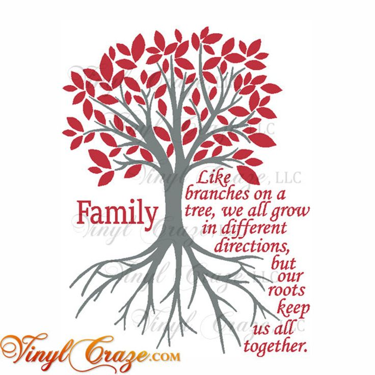 Family Like branches on a tree roots grow together Saying