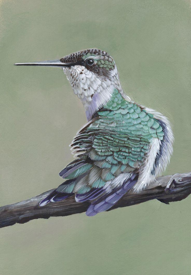 Hummingbird  Painting print of painting by LouiseDeMasi on Etsy