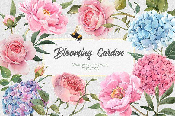 Blooming Garden Watercolor Floralset Garden Watercolor Watercolor Flowers Floral Watercolor