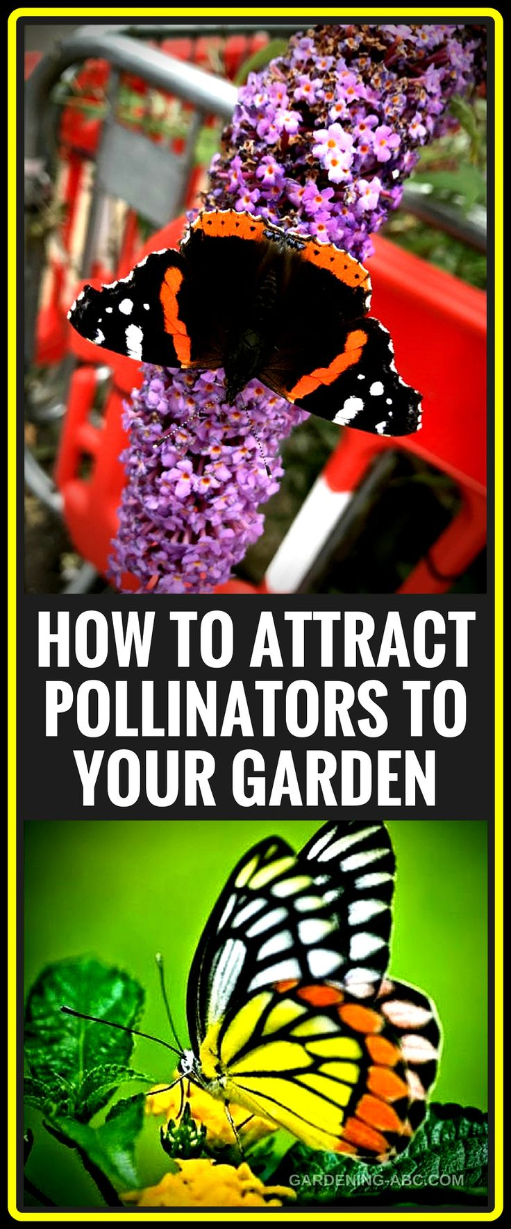 What Is A Pollinator Garden How To Make Your Garden 400 x 300