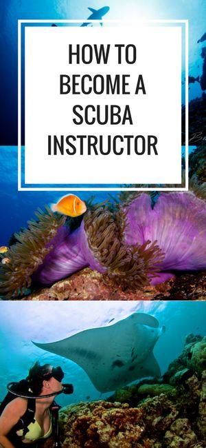 Best 25 scuba diving jobs ideas on pinterest scuba - Dive instructor jobs ...