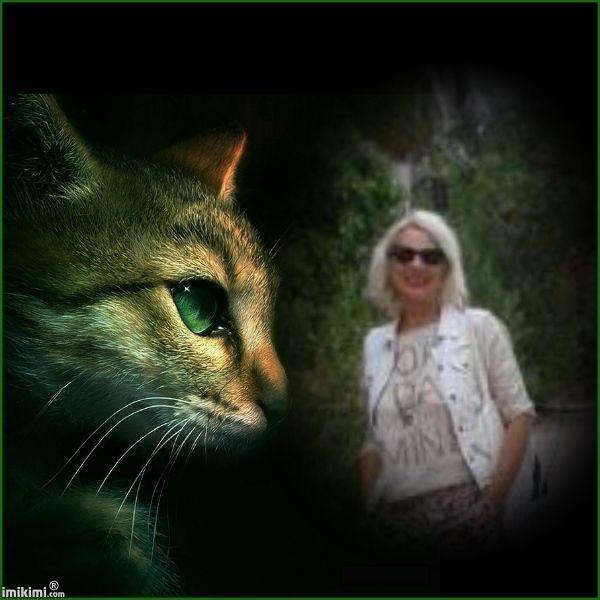 BLP - CATS