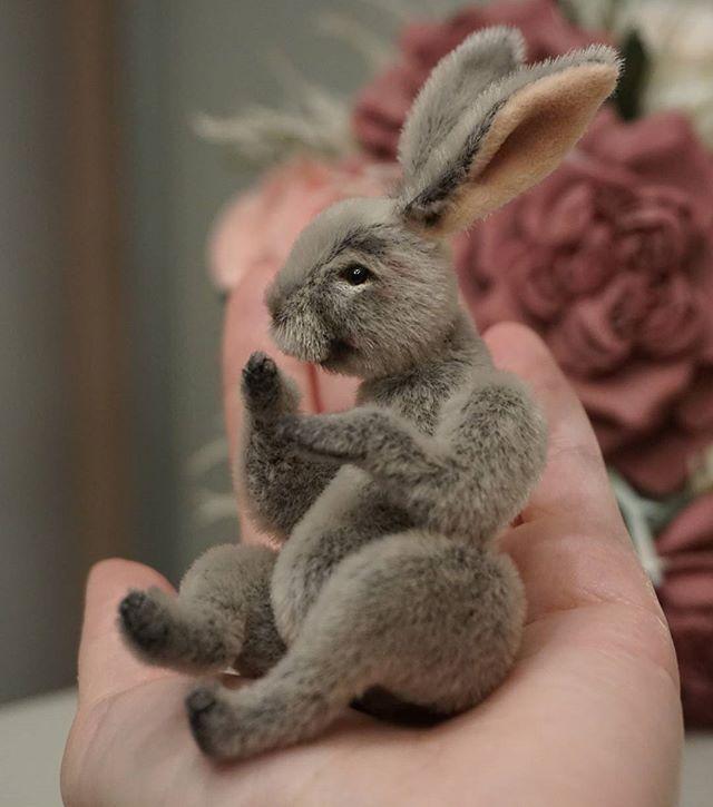 Виктория Макарова @skazkalab Ещё немножко крол...Instagram фото   Websta (Webstagram)