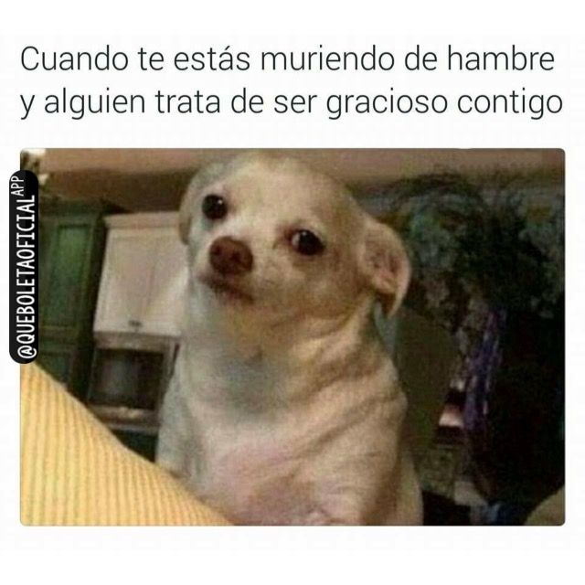 #Humor #Meme #Funny #Entretenimiento #Instagram #Queboleta #Queboletaoficial #Añonuevo #Aguero