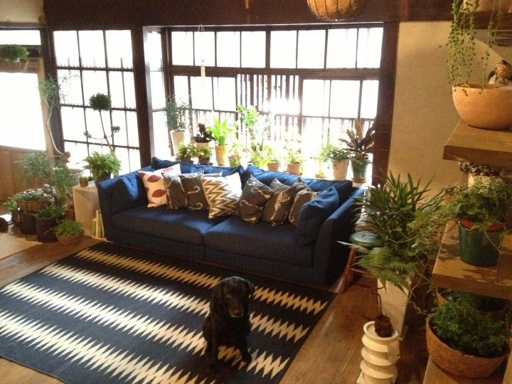Oil Street Guesthouse Kyoto