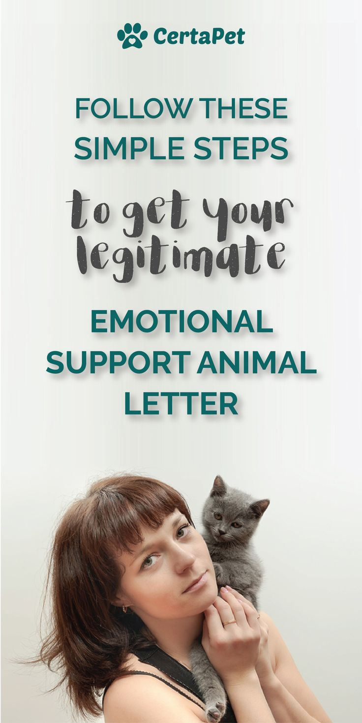 Get an Emotional Support Animal Letter ConsultationYou Can