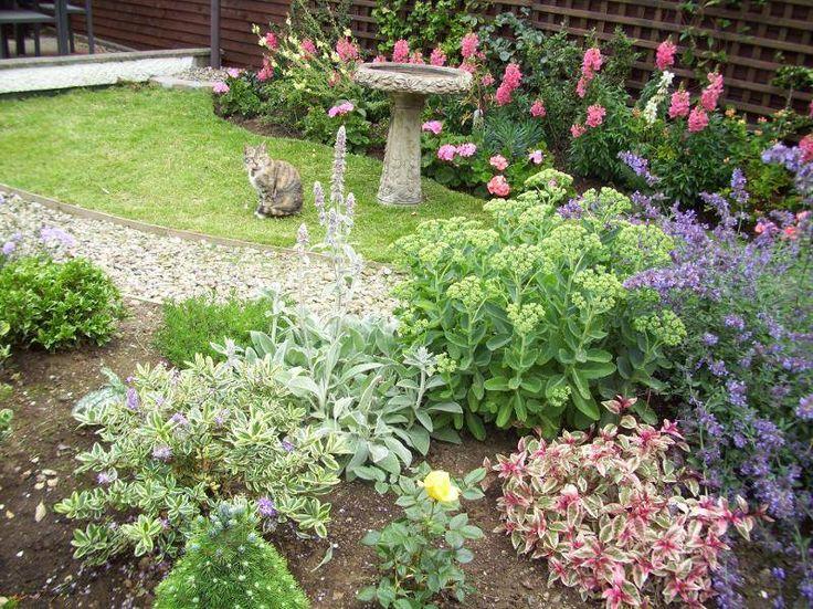 Beautiful garden from the Gardening Club