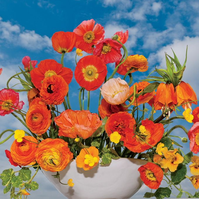 "Brides.com: Colorful Wedding Centerpieces. Tangerine & Saffron Wedding centerpiece of poppies, ranunculus, fritillarias, and nasturtium vine, $300.  Vibe + Venue: ""Poppies are openfaced and cheerful—ideal for a casual tented wedding,"" says New York City–based florist Livia Cetti of The Green Vase.  Tablescape Tip: ""Create smaller versions of this arrangement and scatter them along a rectangular table,"" advises Cetti.  Palette Plan: ""Stick with crisp white table linens.""  Similar Look…"