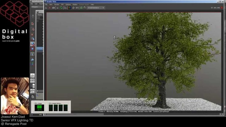 How to Rendering High Details of Tree with Arnold & Maya