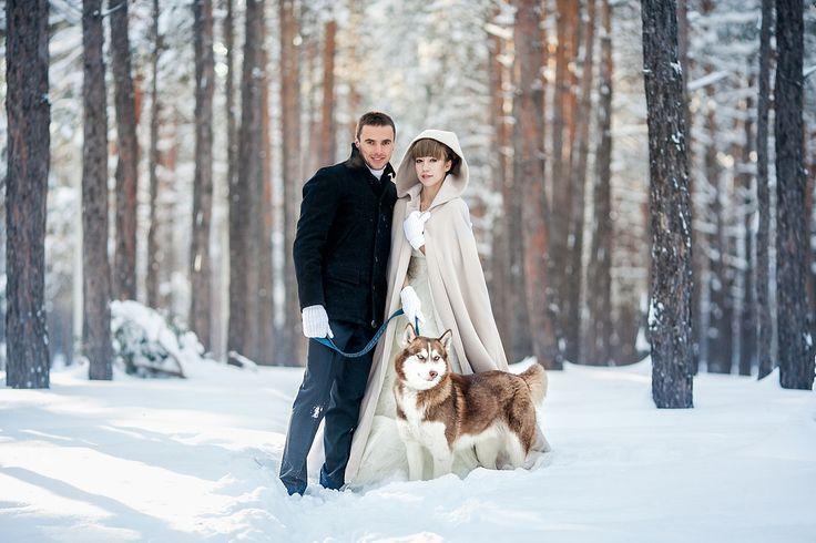 snowy forest, winter wedding, dog husky