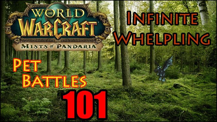 awesome WoW Pet Battles 101 Rare Pets Infinite